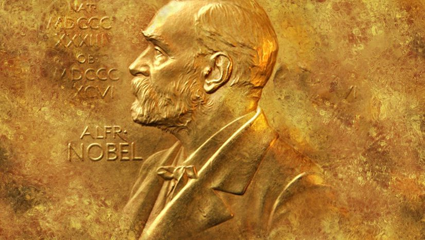 Nobel memorial prize in economic sciences - A critical overview